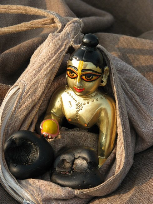 Arjuna Krishna dasa