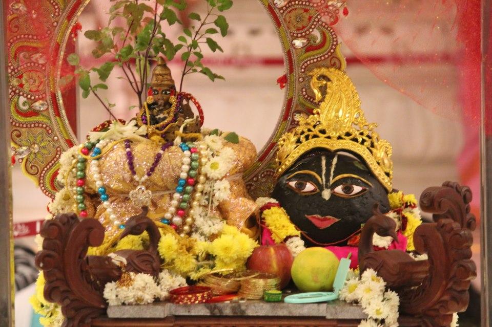 Image result for tulasi shaligram vivah